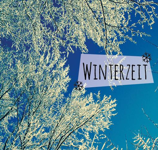 winterzeit, odenwald, winterwonderland