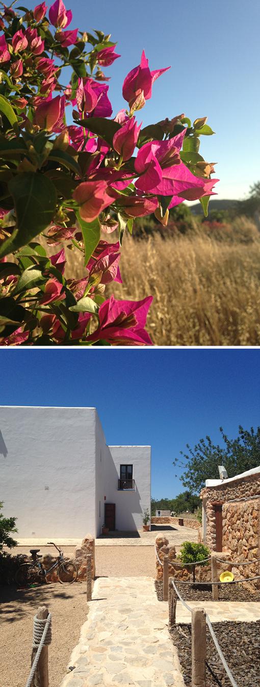 Ibiza Airbnb, Ibiza Übernachtung
